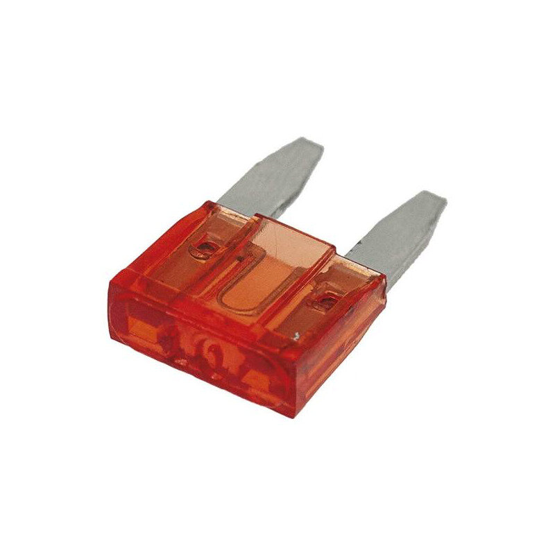 Blade Fuse 10mm 10A