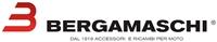 BERGAMASCHI logo