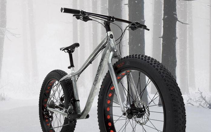 Fat Bike Vertek