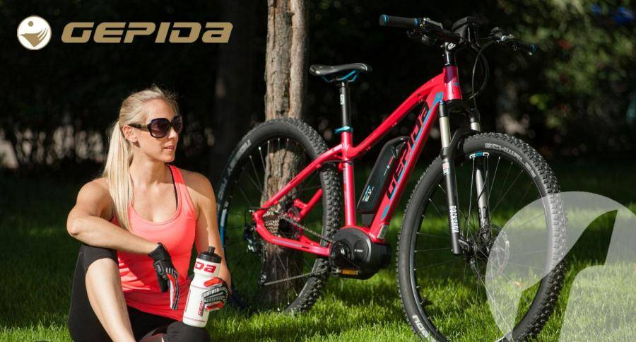 Electric pedelec bikes Gepida