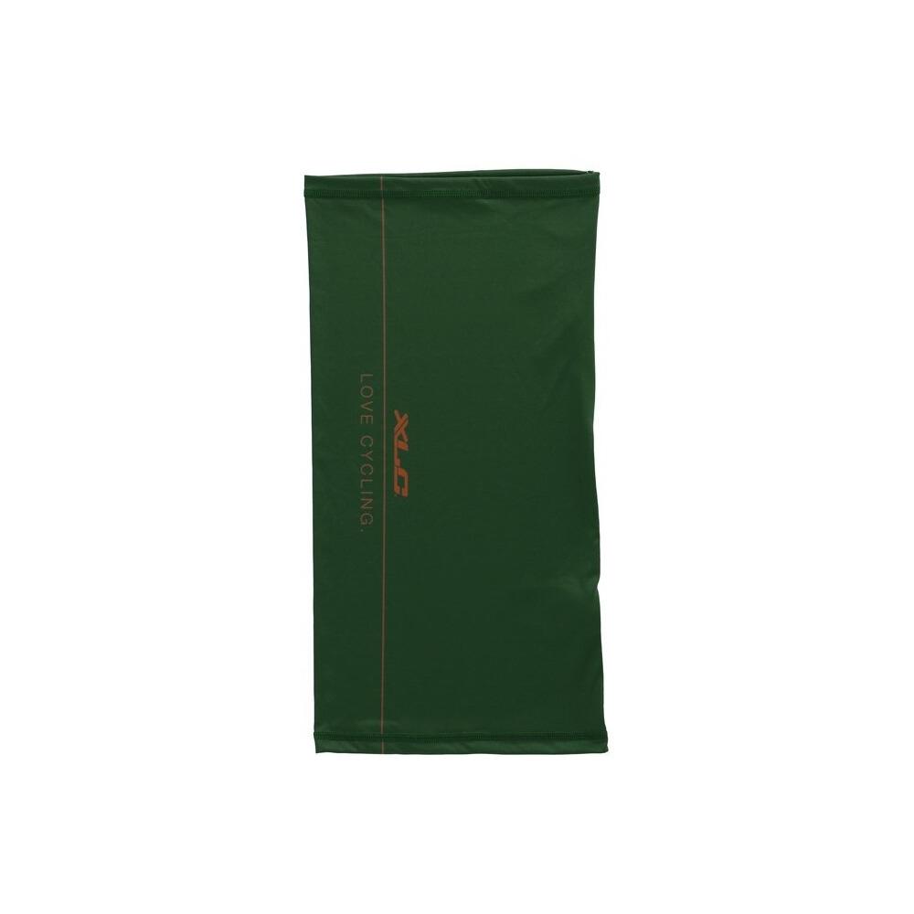 Fascia BH-H01 Verde
